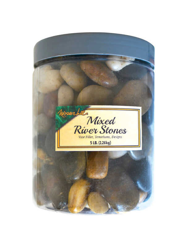 Mosser Lee  Mixed River Stones  Assorted  Vase Filler  5 lb.