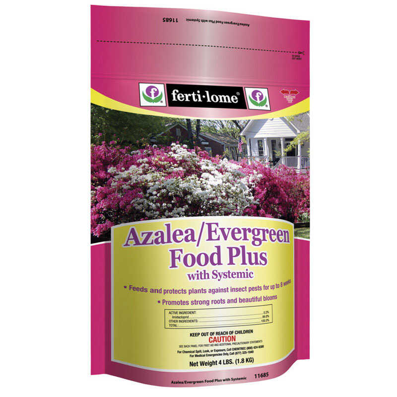 Ferti-Lome  Azalea/Evergreen Food Plus with Systemic  Insect Killer  4 lb.