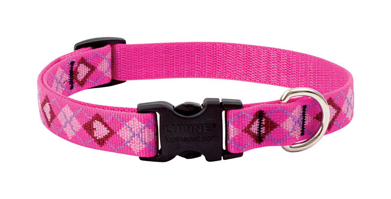 Lupine Pet  Original Designs  Puppy Love  Nylon  Dog  Adjustable Collar