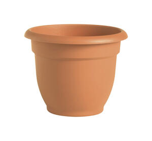 Bloem  10 in. Dia. Resin  Ariana  Terracotta Clay  Planter