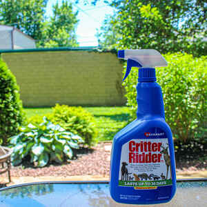 Havahart  Critter Ridder  Animal Repellent  Spray  For Most Animal Types 32 oz.