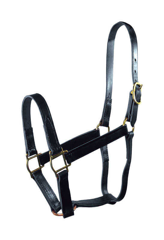 Hamilton  Leather  Halter