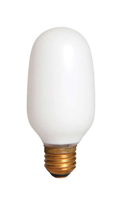 Smart Electric  Smart Dimmer  100 watts T5  Specialty  Incandescent Bulb  E26 (Medium)  Soft White