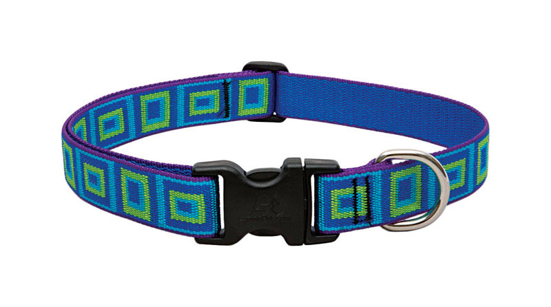 Lupine Pet  Original Designs  Sea Glass  Nylon  Dog  Adjustable Collar