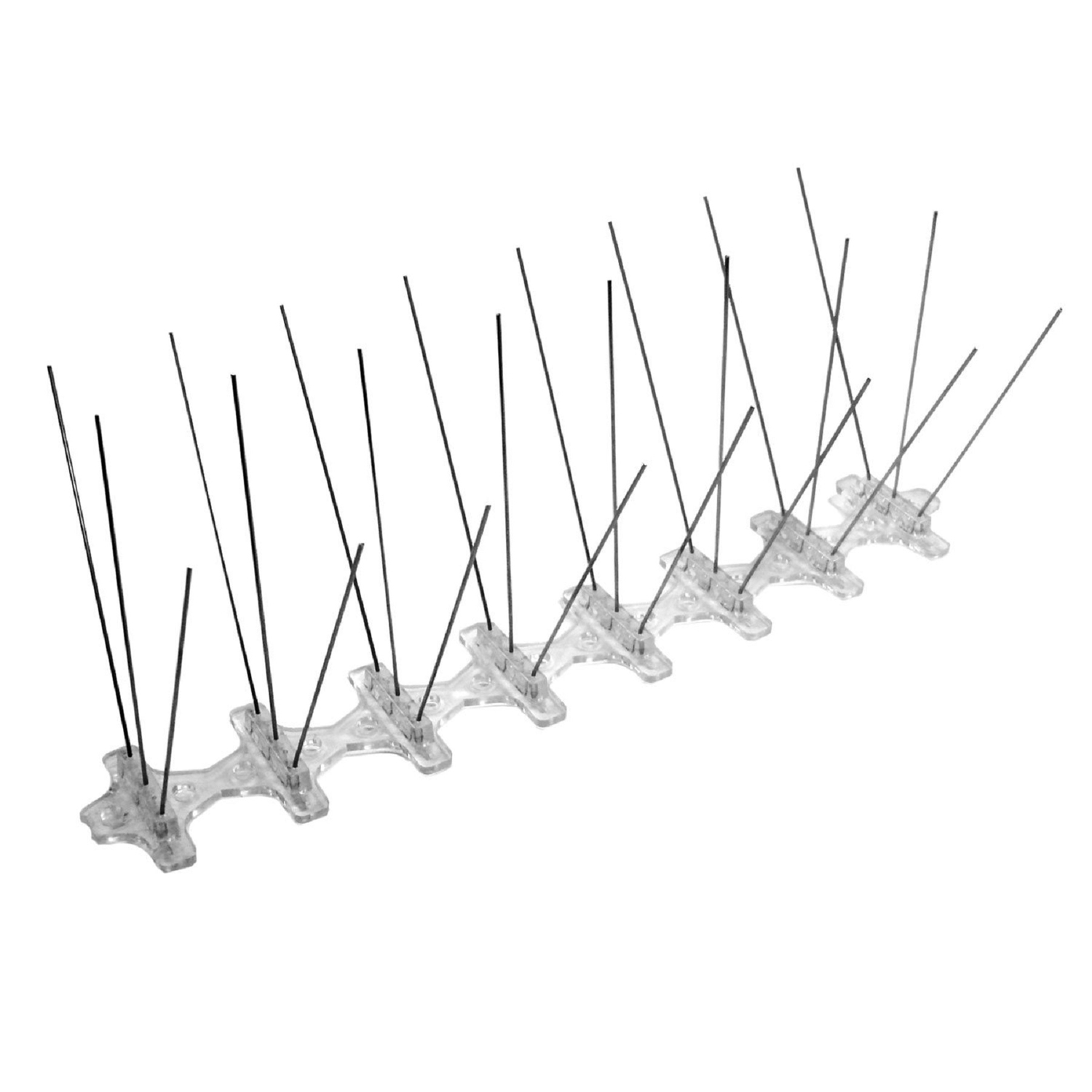 bird b gone bird repelling spikes for assorted species ace hardware Renovate Attic Space bird b gone bird repelling spikes for assorted species