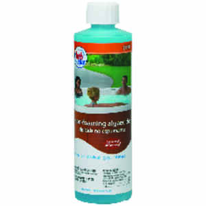 hth  Spa  Algaecide  16 oz.