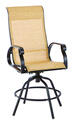 2-Pack Living Accents Swivel Brown Aluminum Chair