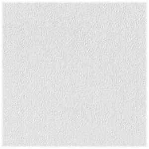 USG Sheetrock Brand  Non-Directional  2 ft. L x 2 ft. W 0.5 in. Square Edge  Gypsum  Ceiling Panel