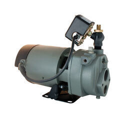 Star Water Systems  1 hp 1170 gph Cast Iron  Convertible Jet Pump