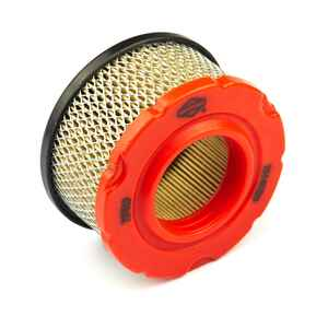 Briggs & Stratton  Air Filter Cleaner
