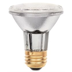 Westinghouse  Eco-Par  38 watt PAR20  Floodlight  Halogen Bulb  500 lumens Clear  1 pk