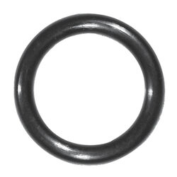 Danco 1 in. Dia. x 3/4 in. Dia. Rubber O-Ring 1 pk