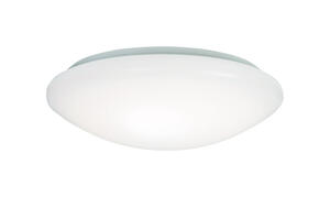 Metalux  16.5 in. H x 15 in. W x 16.3 in. L White  Ceiling Light