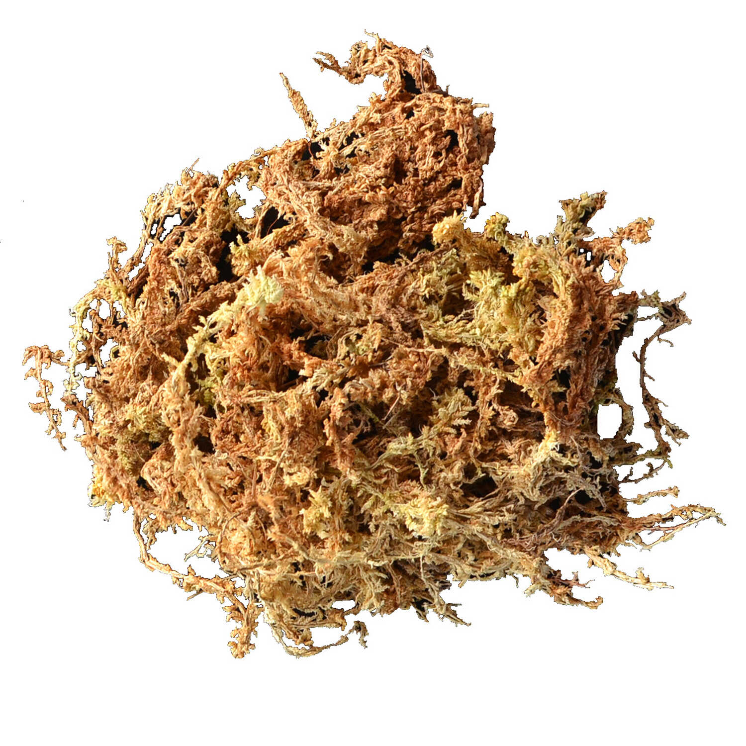 Mosser Lee  Long Fibered  Organic Sphagnum Moss  432 cu. in.