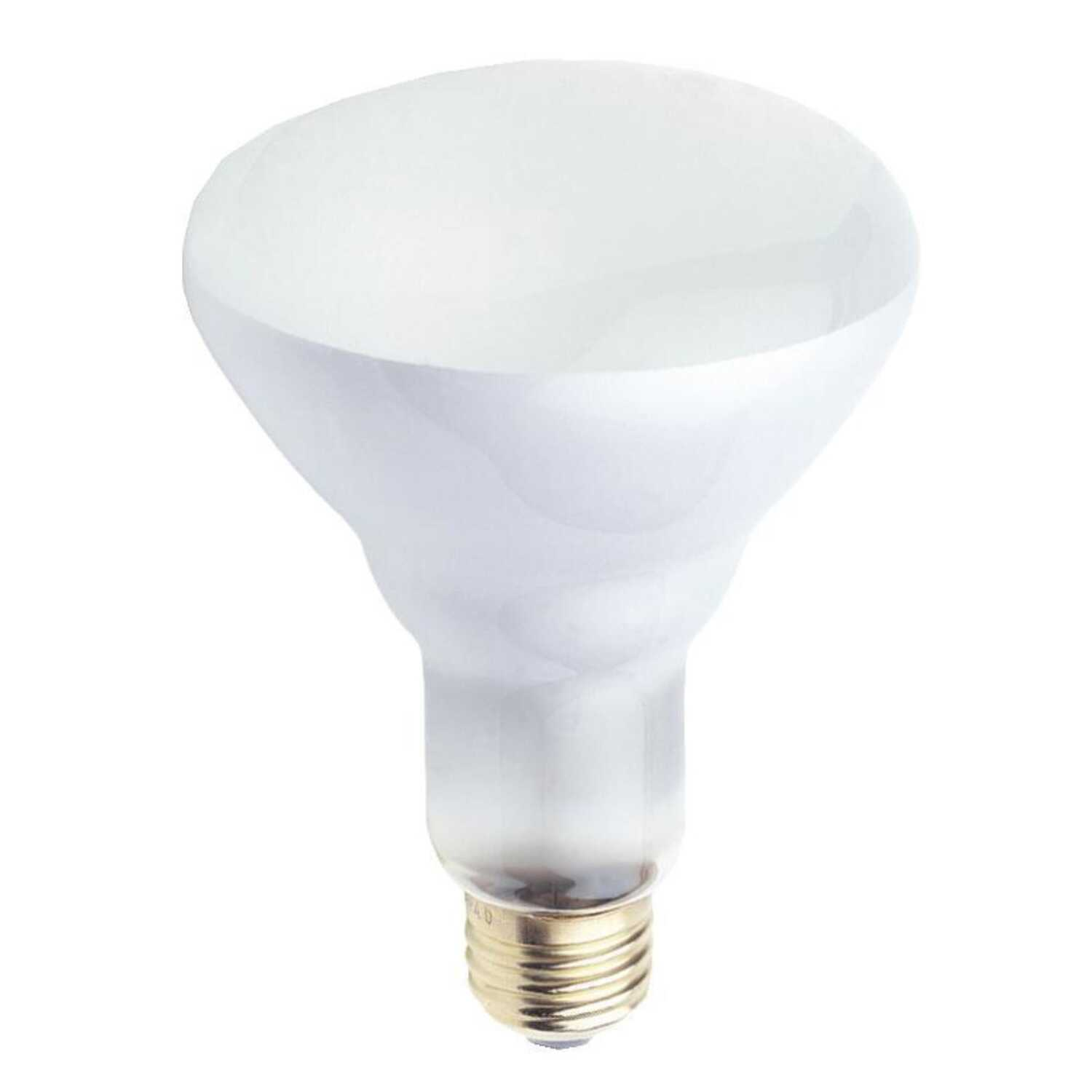 Westinghouse  50 watts BR30  Incandescent Bulb  400 lumens White  Floodlight  1 pk