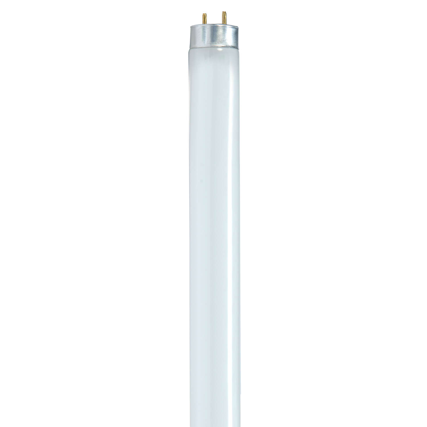 Satco 32 watts T8 1 in. Dia. x 47.78 in. L Fluorescent Bulb Cool White Linear 3500 K 1 pk
