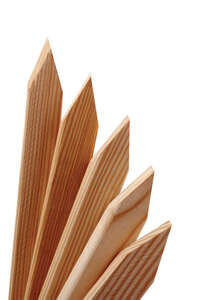 Universal Forest  48 in. H x 2 in. W Wood  24 pk Grade Stake