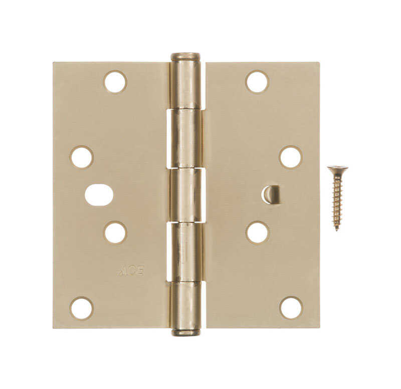 Ace  4 in. L Satin Brass  Steel  Residential Door Hinge  1 pk