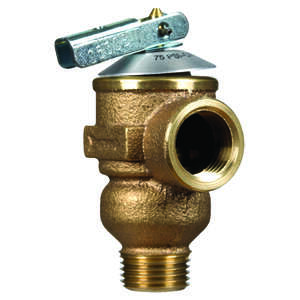 Cash Acme  1/2 in. Pressure Only Relief Valve  Pressure Only Relief Valve