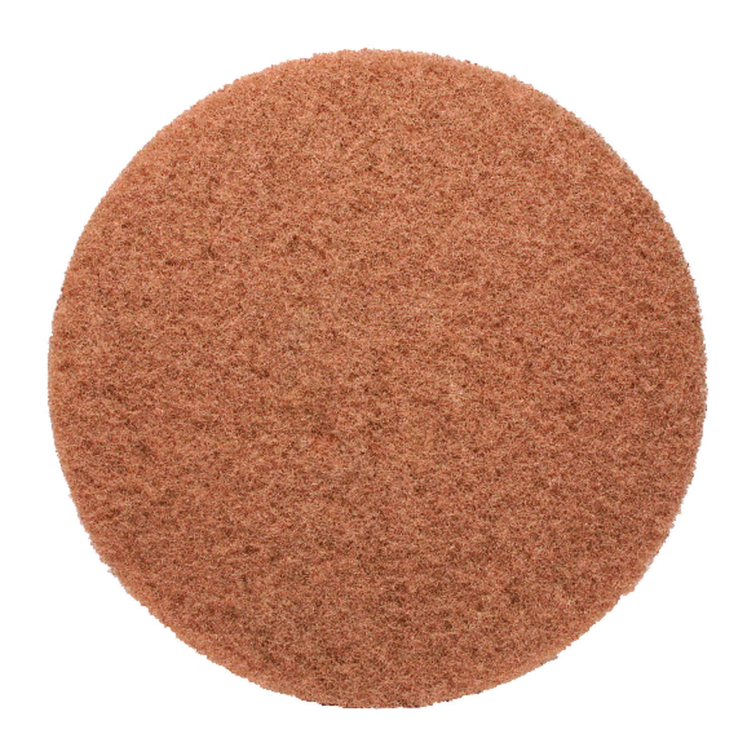 Gator  13 in. Dia. Floor Pad Disc Tan  Non-Woven Natural/Polyester Fiber  Tan