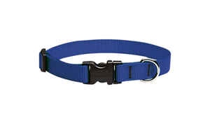 Lupine Pet  Basic Solids  Blue  Nylon  Dog  Adjustable Collar