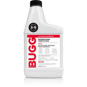 BUGGSLAYER  Insect Killer  16 oz.