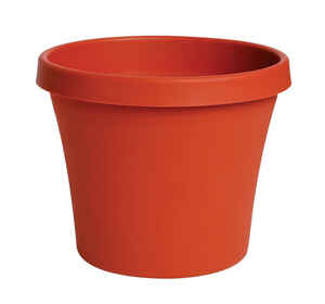 Bloem  Terrapot  9 in. H x 10 in. Dia. Terracotta Clay  Resin  Traditional  Planter