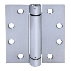Tell  4.5 in. L Stainless Steel  Spring Hinge  1 pk