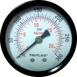 Tru-Flate  Polycarbonate  Air Line Gauge  1/4 in. NPT  300 psi 1 pc.