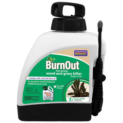 Bonide  Organic Weed and Grass Killer  RTU Liquid  1.33 gal.