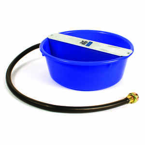 Pet Lodge  Blue  Plastic  160 oz. Automatic Pet Waterer  For Dog