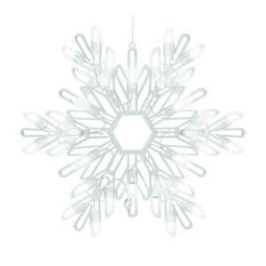 Celebrations  LED Snowflake  White  Plastic  1 each Silhouette