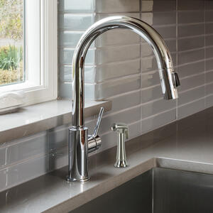 Ace  Brushed Nickel  Plastic  Kitchen Side Spray Head  All Faucet Brands