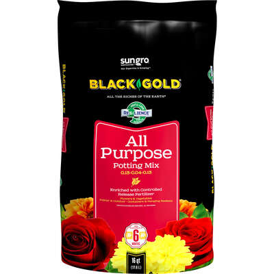 Black Gold  Potting Soil  16 qt.