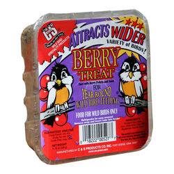 C&S Products Berry Treat Assorted Species Beef Suet Wild Bird Food 11.75 oz.