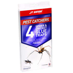 JT Eaton  Pest Catchers  Spider and Cricket Glue Traps  4 pk 4 pk