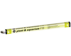 GE Lighting  Plant & Aquarium  15 watts T8  18 in. L Fluorescent Bulb  Warm White  Linear  3100 K 1