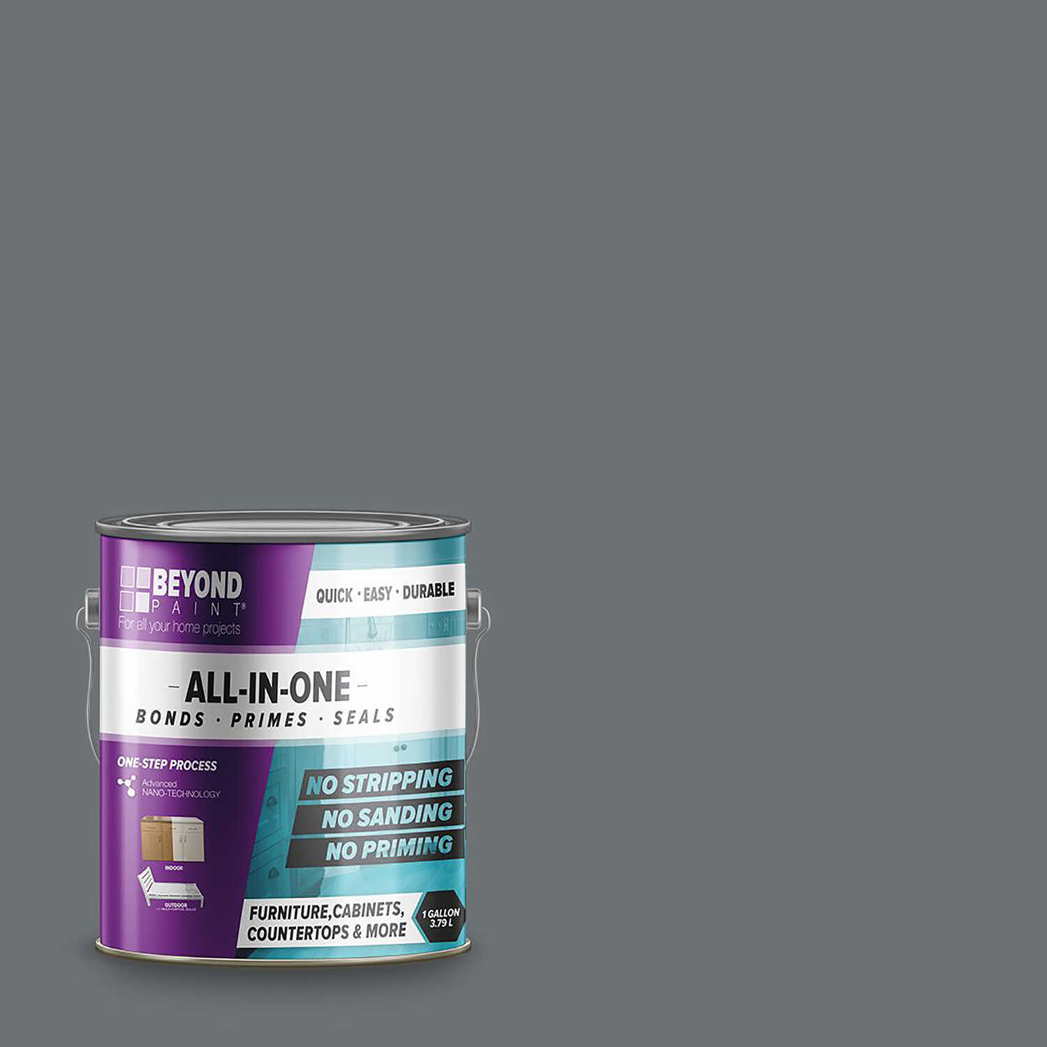 BEYOND PAINT  Matte  Pewter  Water-Based  Acrylic  All-In-One Paint  1 gal.