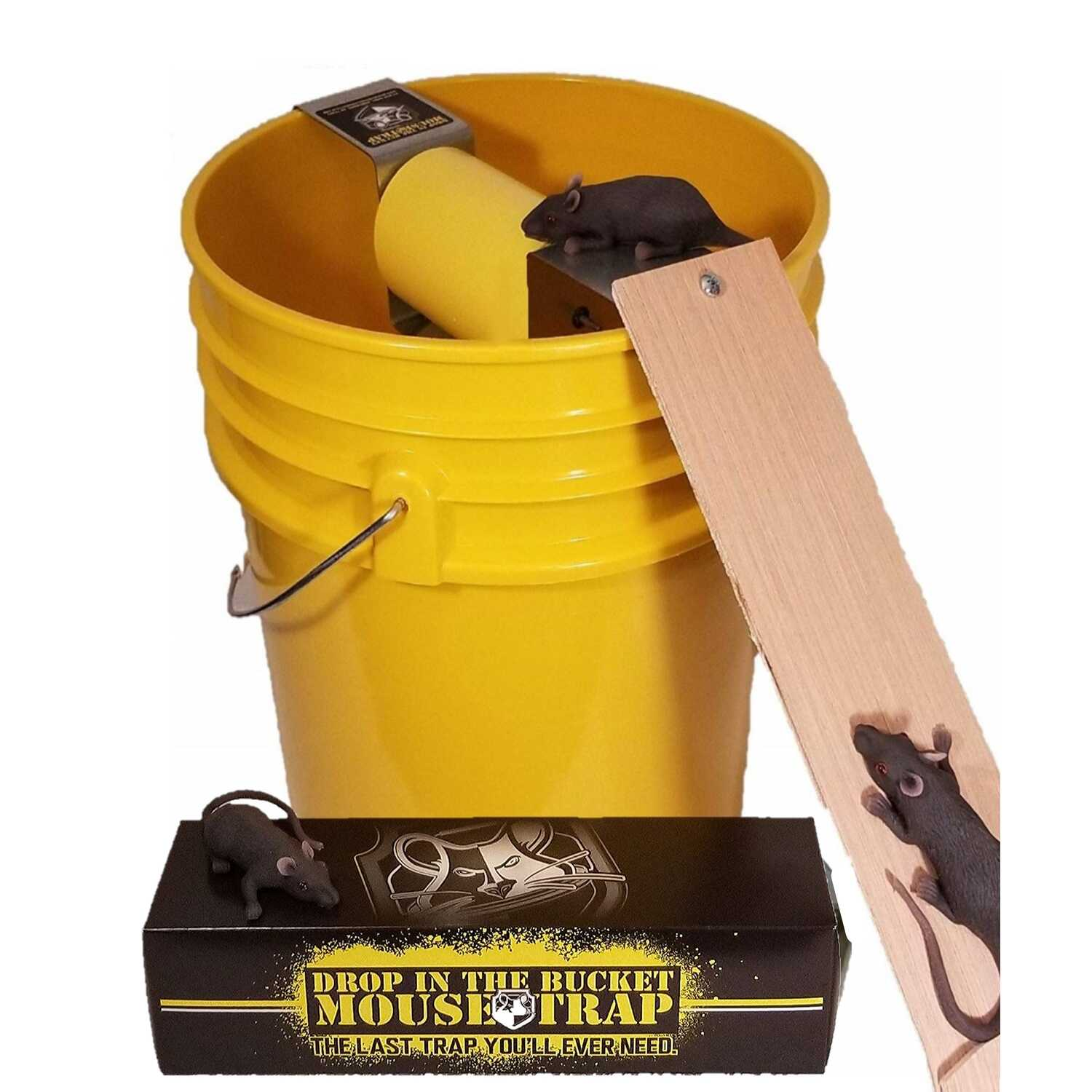 Drop In The Bucket  Multiple Catch  Animal Trap  For Mouse 1 pk