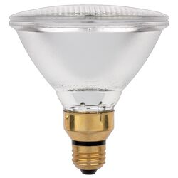 Westinghouse  71 watt PAR38  Floodlight  Halogen Bulb  1,350 lumens Warm White  2 pk