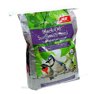 Ace  Assorted Species  Wild Bird Food  Black Oil Sunflower Seed  40 lb.