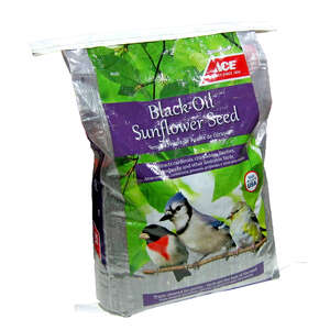 Ace  Assorted Species  Black Oil Sunflower Wild Bird Food  Black Oil Sunflower Seed  40 lb.