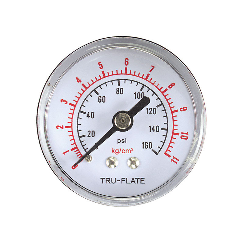 Tru-Flate  Polycarbonate  Air Line Gauge  NPT  1/4  1 pc. 160 psi