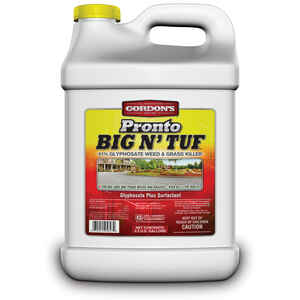 Gordons  Pronto Big N Tuf  Concentrate  Grass and Weed Killer  2.5 gallon gal.