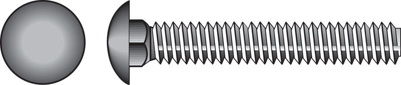 HILLMAN  1/4  Dia. x 1 in. L Stainless Steel  Carriage Bolt  50 pk