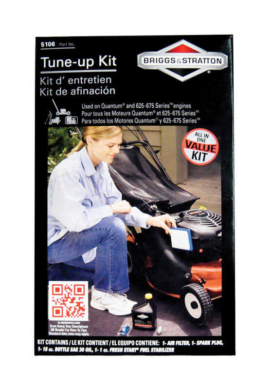 Briggs & Stratton  1 each Tune-Up Kit