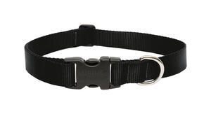 Lupine Pet  Basic Solids  Black  Black  Nylon  Dog  Adjustable Collar