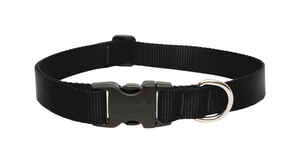 Lupine Pet  Basic Solids  Black  Nylon  Dog  Adjustable Collar