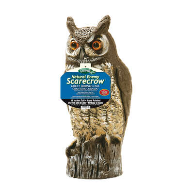 Dalen Scarecrow Great Horned Owl Animal Repellent Decoy For All Pests