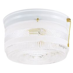 Westinghouse  5-1/4 in. H x 8-3/4 in. W x 8.75 in. L Ceiling Light